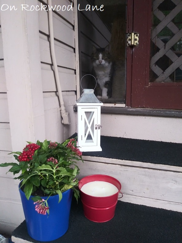 Small porch 4th of July decor with white lantern, blue planter with red flowers, and citronella candle, On Rockwood Lane, cat photo